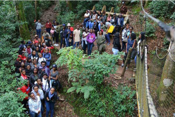 Attractions in Nyungwe